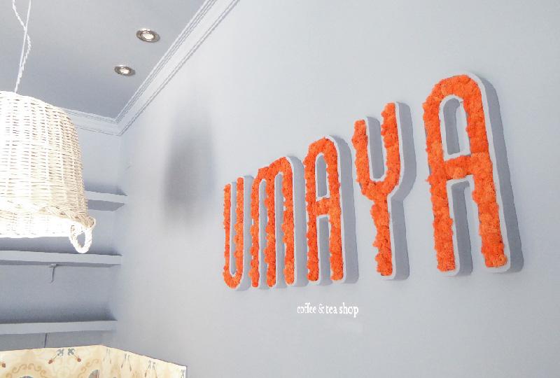 Oggetti decorativi per interni in muschio e licheni