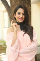 Rakul Preet Singh in lovely Pink Crop Top and Black Trousers at Jaya Janaki Nayaka success meet 003.JPG