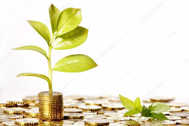 Haz crecer tu dinero