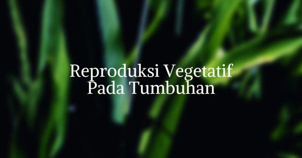 Reproduksi Vegetatif Pada Tumbuhan - Trigonal Media