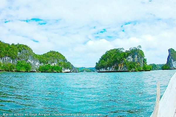 small rock islands in Raja Ampat archipelago