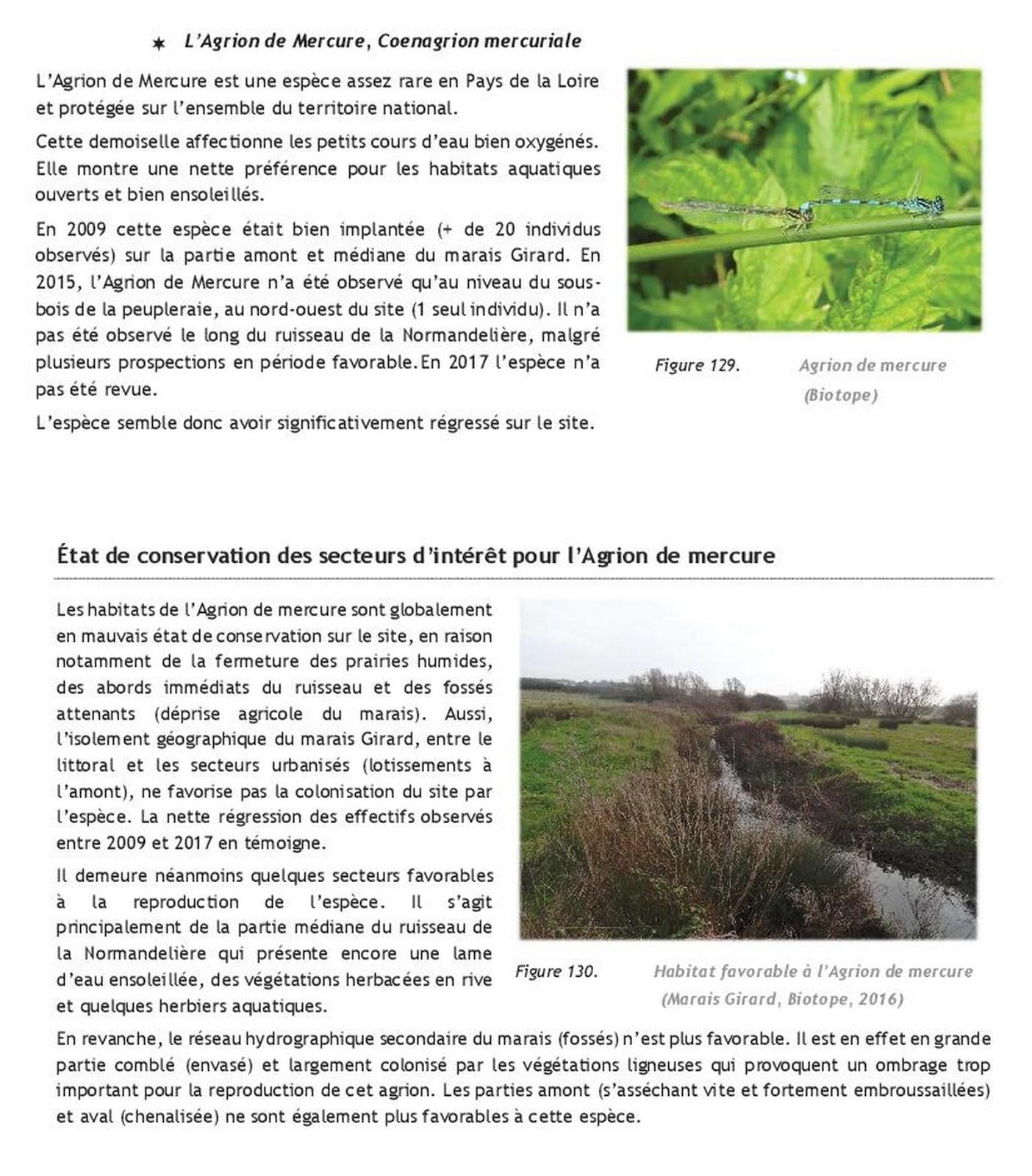 Le blog de surveillance du site de la Normandeli¨re  Bretignolles