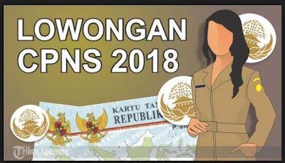 Pendaftaran CPNS 2018