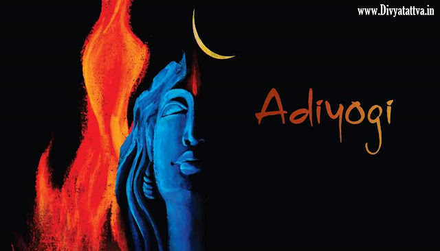 Shiva, shiv, lord, god, spiritual, hindu god, shiva wallpaper, shiva backgrounds, adiyogi