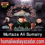 http://www.humaliwalayazadar.com/2015/10/murtaza-sumeri-nohay-2016.html