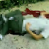 Pelajar maut terjatuh dari bumbung pusat beli belah