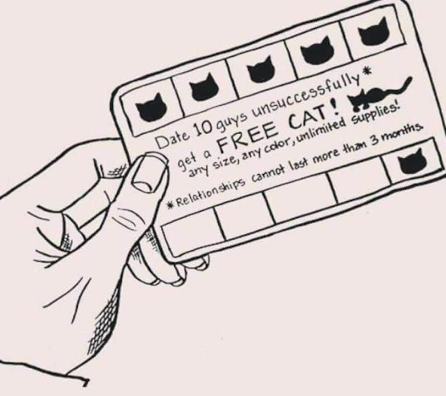 Date 10 guys unsuccessfully get a FREE CAT!