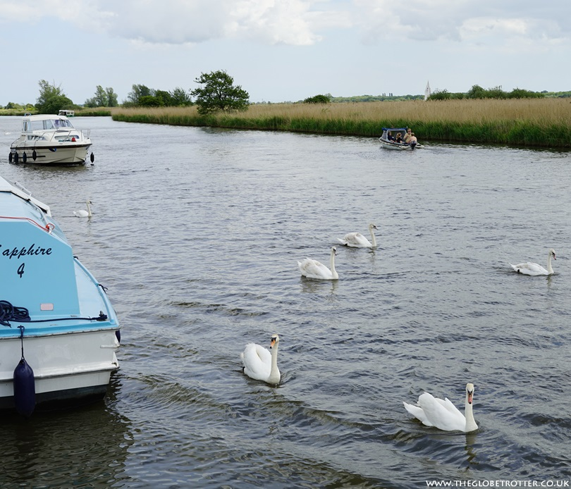 The Norfolk Broads in the UK