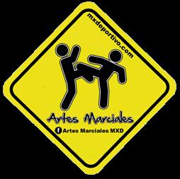 MXDArtesMarciales