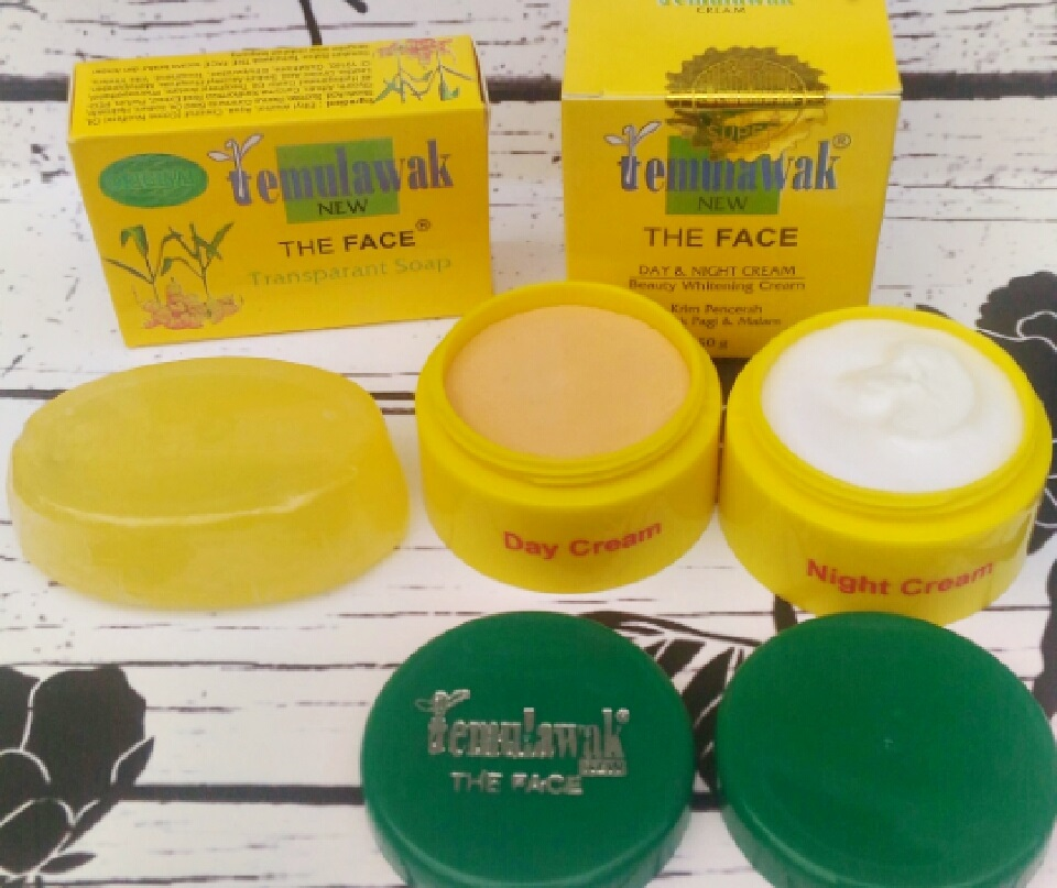 Cream Temulawak The Face Original