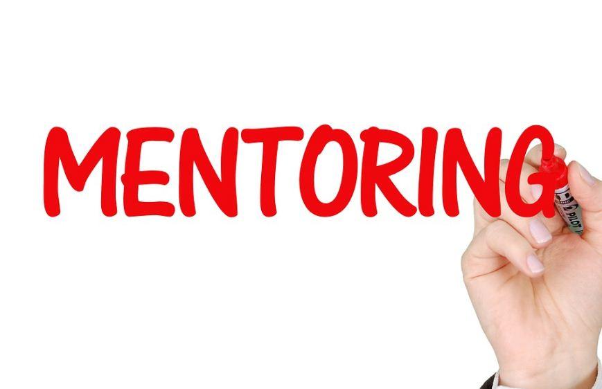 Apakah Peran Dan Tugas Mentor?