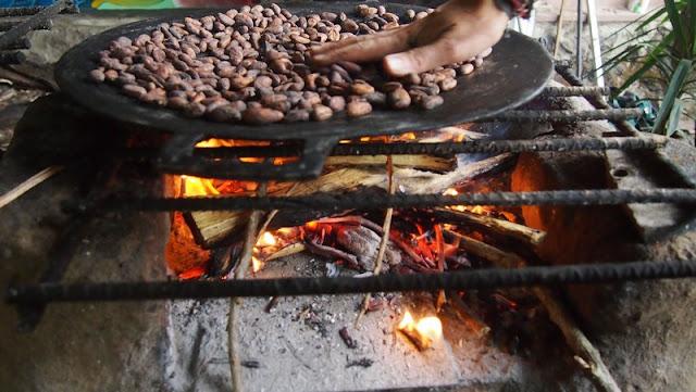 beans chocolate