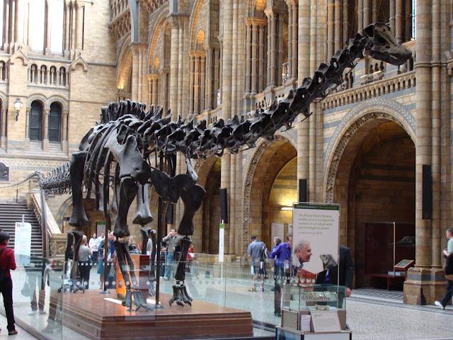 Bảo tàng lịch sử tự nhiên London