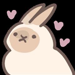rabbit bubu