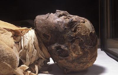 Pharoah Ramesses III killed by multiple assassins
