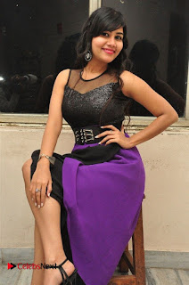 Telugu Actress Rachana Smith Stills at Money is Honey Audio Release  0075.jpg