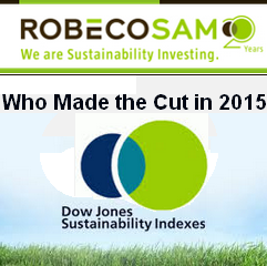 The GREEN MARKET ORACLE: Dow Jones Sustainability Index: Who