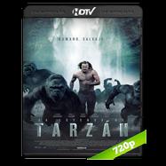 La Leyenda de Tarzán (2016) HDRip 720p Audio Dual Latino-Ingles