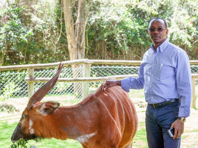 Shocking List Of People Wanted Alongside Blue Moon Billionaire Kariuki