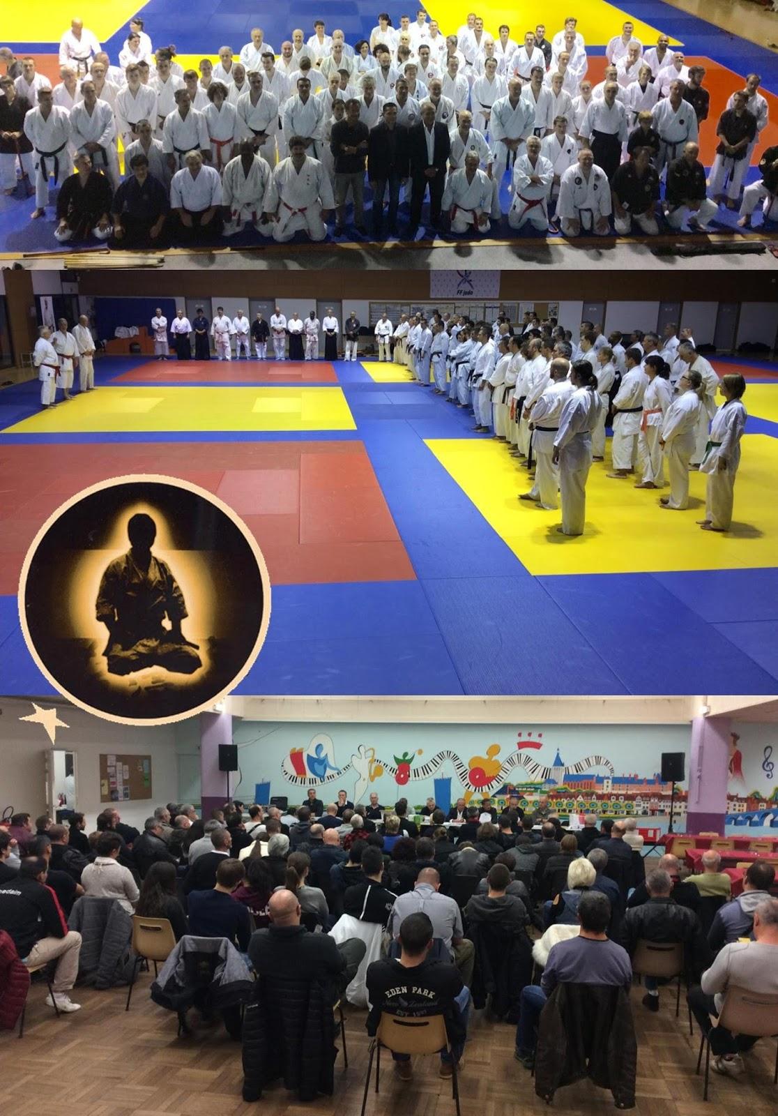 Arts martiaux yiseishindo montceau les mines novembre 2016 for Art martiaux