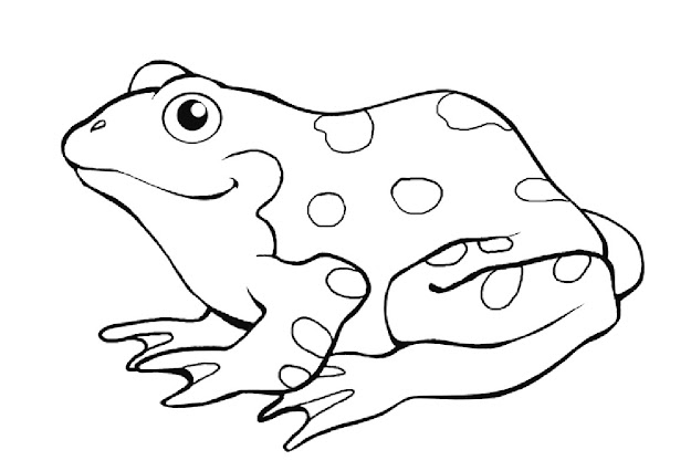 Preschool Frog Coloring Pages Throughout Picture Of Page