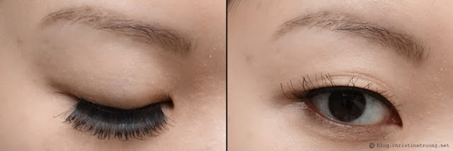 SocialEyes - Let Your Eyes Do The Talking. SocialEyes Envy Lashes Review for Monolids.