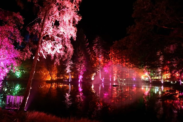 An Evening in The Enchanted Forest, Pitlochry