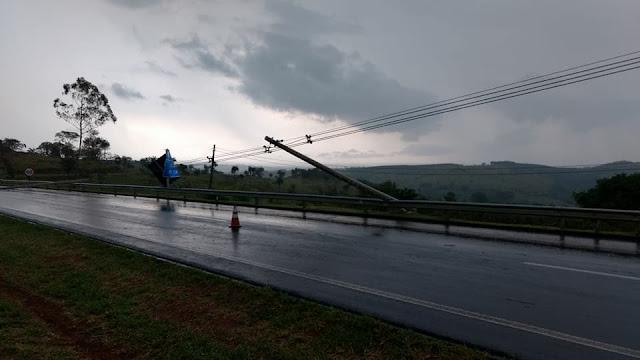 Forte chuva derruba arvore e  três postes energizados na SP-342 em Pinhal