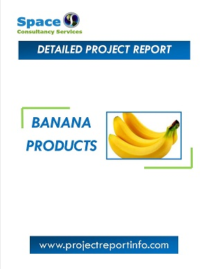 Banana Products Manufacturing Project Report