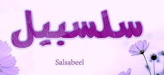 معنى أسم سلسبيل وكتابة هذا الأسم باللغة الإنجليزية