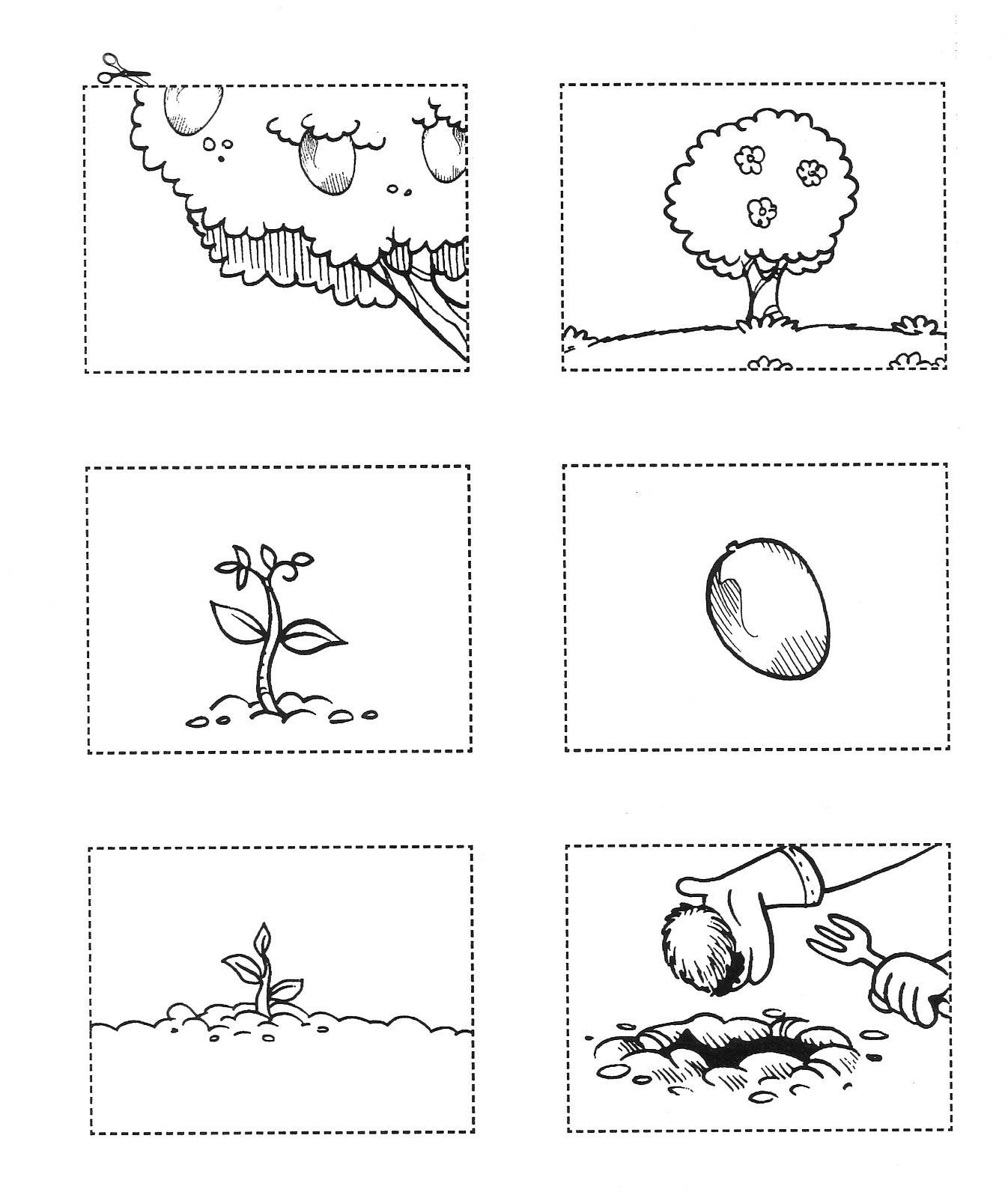Muito Atividades de Ciências - Plantas e Meio Ambiente — SÓ ESCOLA JZ96