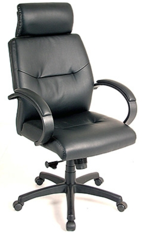 Maxx Leather Office Chair by Eurotech