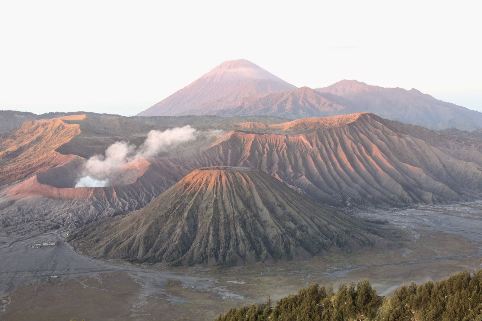 藍小龍: 小龍遊記@婆羅摩火山 伊真火山 泗水 印尼 (Mt. Bromo & Ijen Caldera BlueFire)