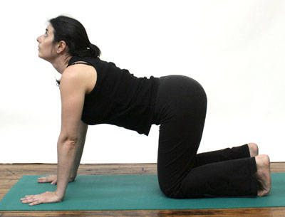 healthy n fit yoga pose to relieve your back pain