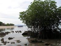 Isla de Kanawa, Labuan Bajo, Isla de Flores, Isla de Bali, Indonesia, vuelta al mundo, round the world, La vuelta al mundo de Asun y Ricardo