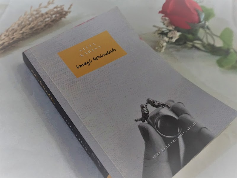 Novel Review : Imaji Terindah - Sitta Karina
