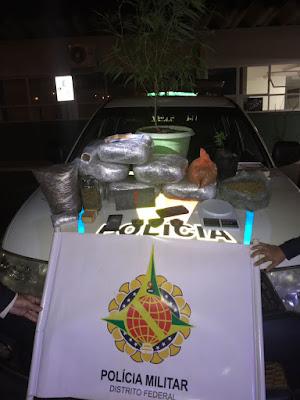 Traficante preso com quase 8 kg de maconha híbrida no Gama