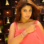 Richa Gangopadyay Saree Stills in Mirapakay Telugu Movie