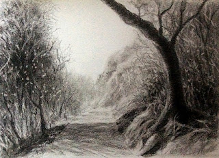 Charcoal sketching of a forest scene from Mahableshwar on Fabriano Academia paper by Manju Panchal
