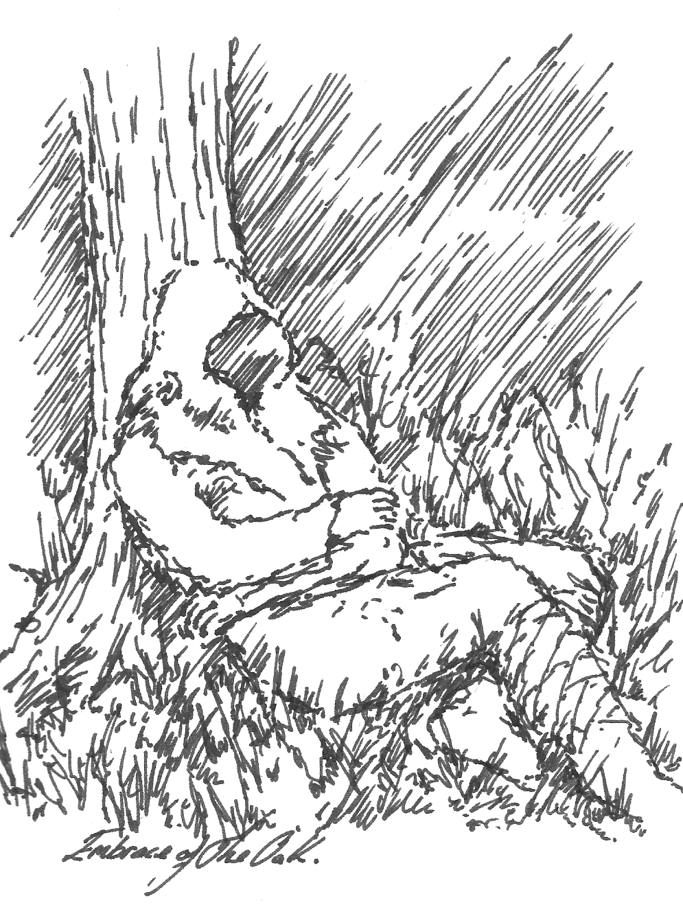 tree trunk coloring page related keywords amp suggestions tree trunk