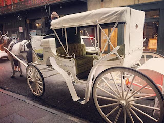 New Orleans Carriage Rides Coupons 2017