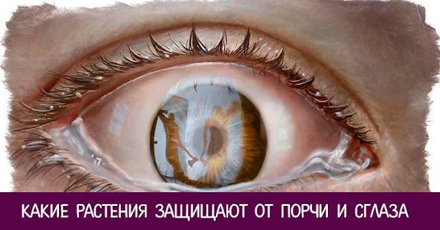 Ярослав Экспресс - Можно ли заболеть от сглаза и порчи