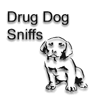 drug detection, drug dog, detention, search, Search and Seizure, oxycodone, trafficking