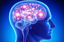 ये 5 जड़ी बूटियां बना सकती है आपके दिमाग को कंप्यूटर से भी तेज