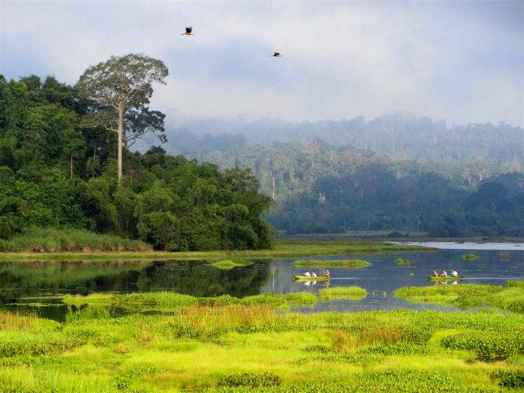 Kinh nghiệm du lịch và tham quan vườn quốc gia Cát Tiên, Đồng Nai