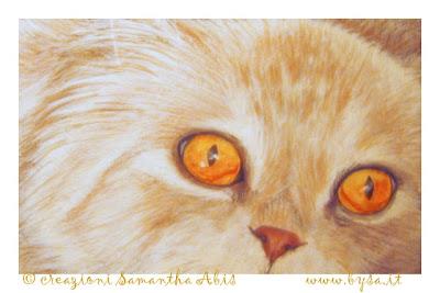 occhi di gatto Rossi arancione