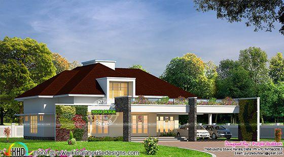 Modern home exterior vertical garden