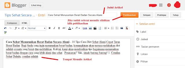 cara menulis artikel di blog