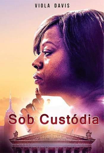Sob Custódia Torrent – WEB-DL 720p/1080p Dual Áudio