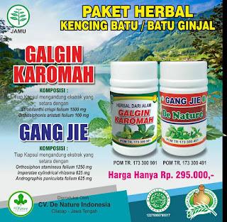 Obat tradisional ginjal mengecil